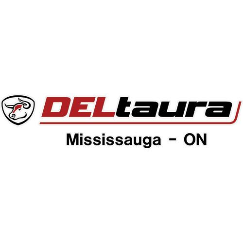 deltaura-web-logo